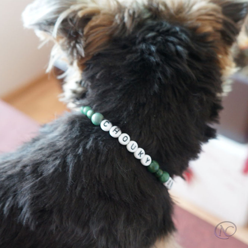 Necklace, for cats and small dogs